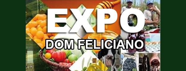 I Expo Dom Feliciano começa a ganhar forma