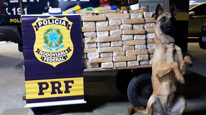 PRF tem aumento de 73% nas apreensões de cocaína no Rio Grande do Sul
