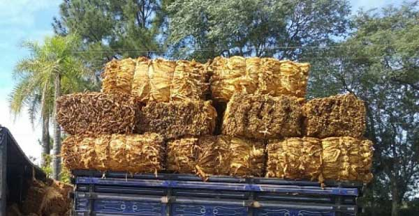 Roubo de cargas de tabaco teve aumento de 160% em 2019